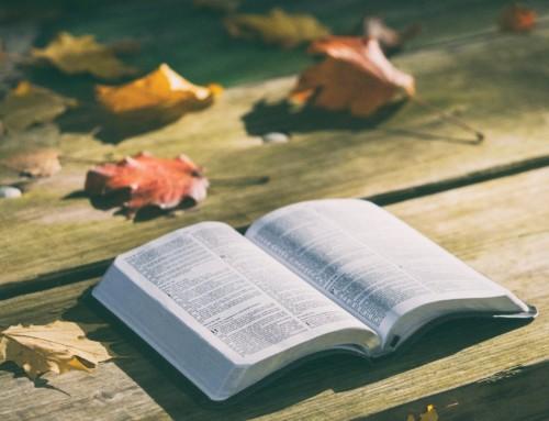 7 versets de psaumes pour la journée
